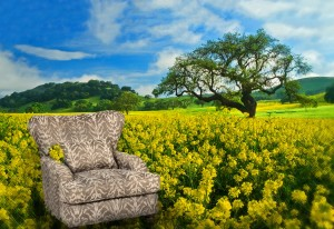 flowerchairs